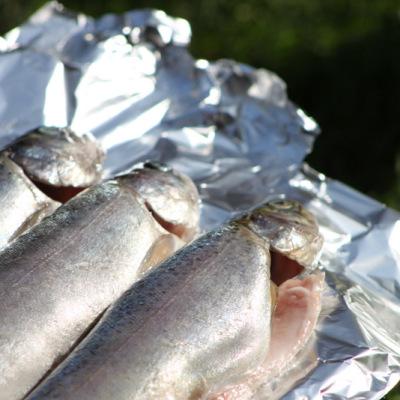 vis-forel-barbecue-grillen