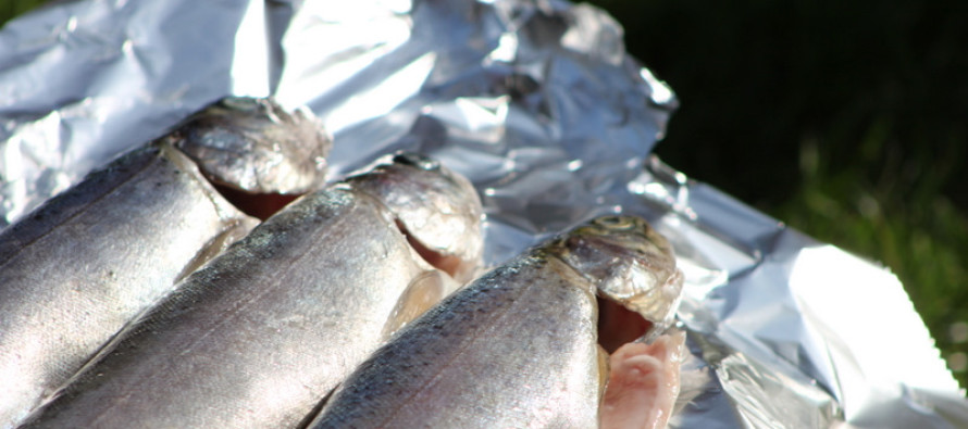 Barbecue recepten - Tips voor het bereiden van vis op de barbecue