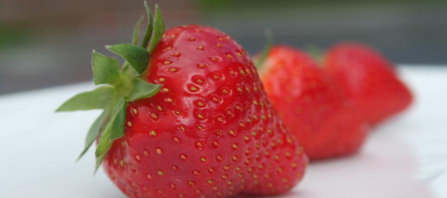 Fruit; Kies voor de smaak van het seizoen