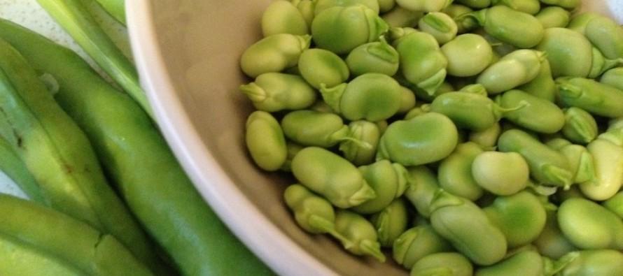 4 keer verrassend kokkerellen met verse tuinbonen