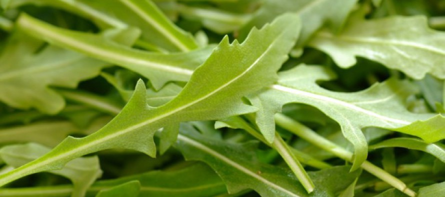 Gesneden groenten gemak of zelf verse groenten snijden?