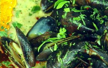 Verse Zeeuwse mosselen bereiden op Aziatische wijze