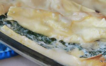 Lasagne van verse snijbiet uit je moestuin