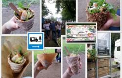 Proefpark Haarlem 2013 was een groot succes!