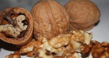 Gezonde noten kraken; Recepten voor jouw inspiratie