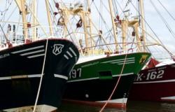 Goedkope import vis verwoest inkomen Nederlandse vissers