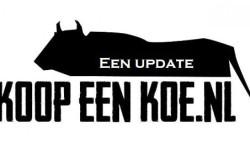 Koop een Koe, een update