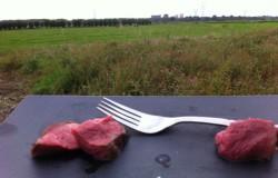 We love Beef, proeven in het weiland en een winactie