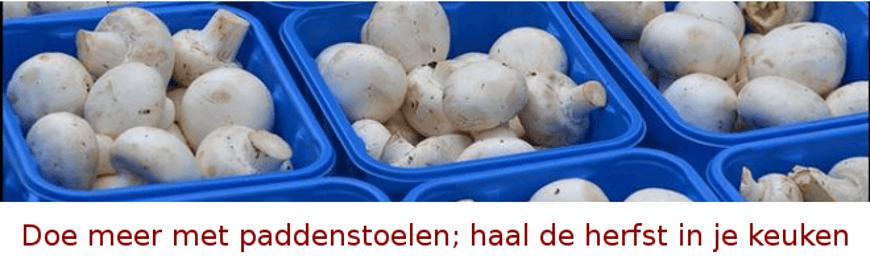 paddenstoelen-herfst