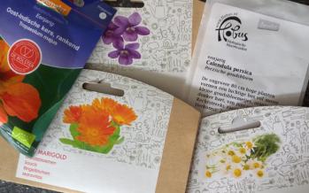 Zelf eetbare bloemen kweken