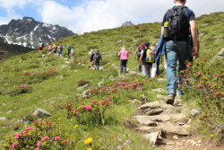 Wandelen in Paznaun-Ischgl