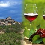 De Languedoc: ga je mee op wijnreis?